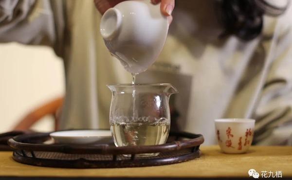 冲泡福鼎白茶